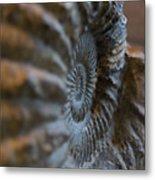 Frozen Spiral Metal Print