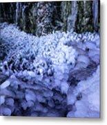 Frozen Stream Metal Print