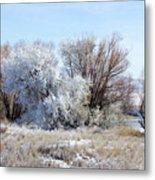 Frozen Trees By The Lake Metal Print