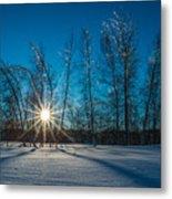 Frozen Trees Under A Winter Sunset Metal Print