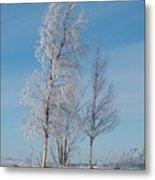 Frozen Views 1 Metal Print
