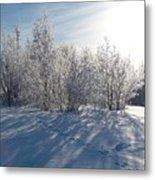 Frozen Views 3 Metal Print