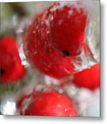 Frozen Winter Berries Metal Print