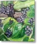 Fruit On The Vine Metal Print