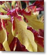 Fruit Roll Up Plant Metal Print