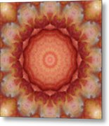 Fuji Apples Kaleidoscope Metal Print