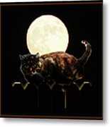 Full Moon Cat Metal Print