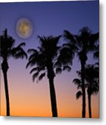 Full Moon Palm Tree Sunset Metal Print by James BO  Insogna
