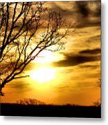 Full Of Beauty Metal Print