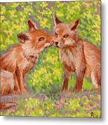 Funny Foxes .2007 Metal Print