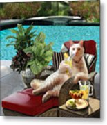 Funny Pet  Vacationing Kitty Metal Print