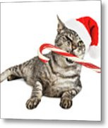 Funny Santa Cat With Candy Cane Metal Print