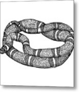 Fursnake Metal Print