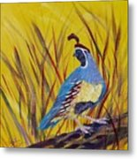Gamble Quail Metal Print by Summer Celeste