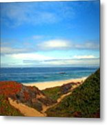 Garapata State Park South Of Monterey Ca Seven Metal Print