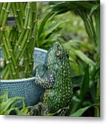 Garden 30 Metal Print