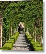 Garden Arbor Path Metal Print
