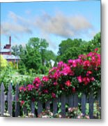Garden Fence And Roses Metal Print
