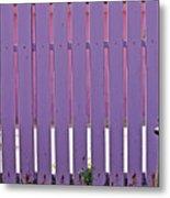 garden Fence Metal Print