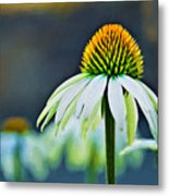 Bristle Flower Metal Print