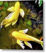 Garden Goldenfish Metal Print