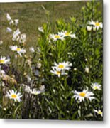Garden Happiness Metal Print
