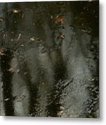 Garden In Winter. Metal Print