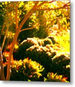 Garden Landscape On A Sunny Day Metal Print