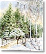 Garden Landscape Winter Metal Print