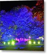 Garden Of Light By Kaye Menner Metal Print