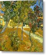 Garden Of Saint Paul's Hospital Metal Print by Vincent van Gogh