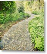 Garden Path - Photography Metal Print