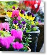 Garden Plants Metal Print