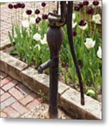 Garden Pump From The Old Days Metal Print