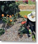 Gardener Pulling Weeds  Metal Print