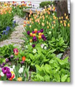 Gardens Of Tulips Metal Print