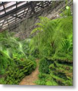 Garfield Park Conservatory Path Chicago Metal Print
