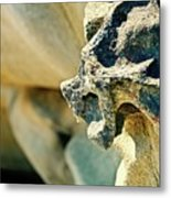 Gargoyle Coming Out Of The Rocks Gabriola Island. Metal Print