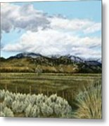 Garner Valley Meadow Metal Print