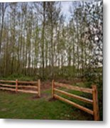 Gates To The Birch Wood Metal Print