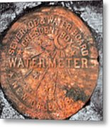 New Orleans Water Meter Cover 9 Months After Katrina Metal Print