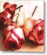 Gathering Rosebuds Metal Print