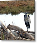 Gbh On Log Metal Print