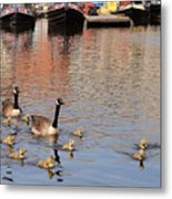 Gees And Goslings 2 Metal Print