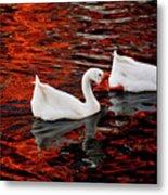 Geese At Lady Bird Lake Metal Print by Mark Weaver