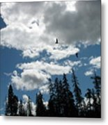 Geese On The Wing Metal Print