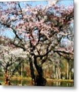 Geese Under Flowering Tree Metal Print