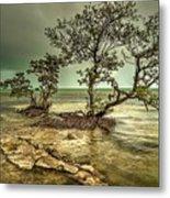 Geiger Key Shoreline Metal Print