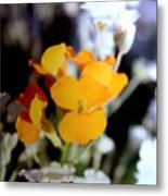Gentle Yellow And White Metal Print