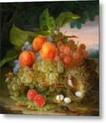 George Forster  Still Life With Fruit And A Birds Nest Metal Print